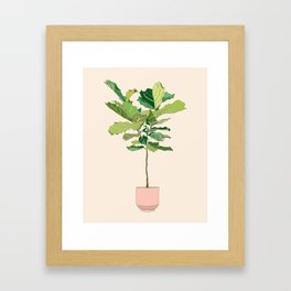 Fiddle Leaf Fig Framed Art Print