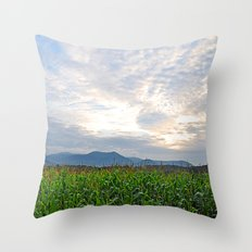 Cornfield in the morning light Throw Pillow