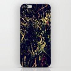 Im Wald iPhone & iPod Skin
