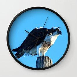 Osprey On A Pole Wall Clock