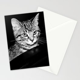 Time is what turns kittens into cats Stationery Cards