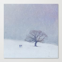 A walk in the snow. Canvas Print