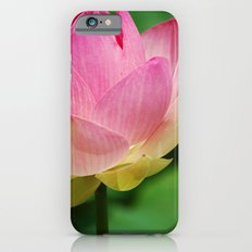 Lotus Blossom Flower 26 Slim Case iPhone 6s