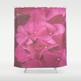 Hydrangea in Pink Shower Curtain
