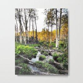 Bubbling Brook Metal Print