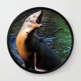 Sea Lion Song Wall Clock