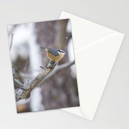 Nuthatch on a Branch Stationery Cards