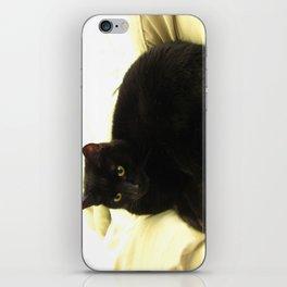 Queen Kitty 2795 iPhone Skin