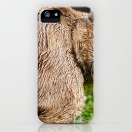 Magnificent Grown Grizzly Bear On Green Meadow With Cute Look On His Face Close Up Ultra HD iPhone Case