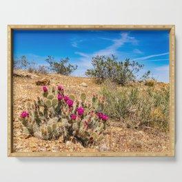 Desert Cacti in Bloom - 3 Serving Tray