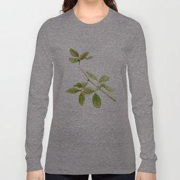 A branch of the tree Psidium fortium Long Sleeve T-shirt