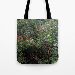 Indian Paintbrush on a Forest Trail Tote Bag