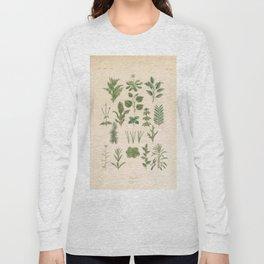 Botany Chart Long Sleeve T-shirt
