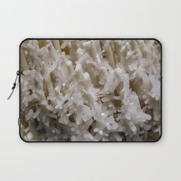 Botanical Gardens II - Crystals #941 Laptop Sleeve