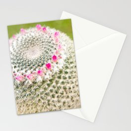 Cactus flowering pink detail blossoms Stationery Cards