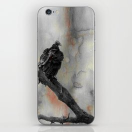 Perched Vulture iPhone Skin