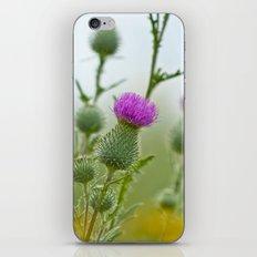 Thistle 5158 iPhone & iPod Skin