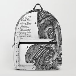 Body Diagram No. 4 Backpack