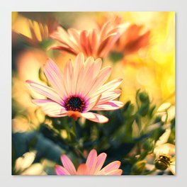 A Piece of Summer Canvas Print