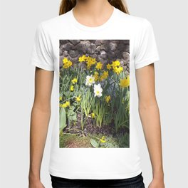 Yellow and White Daffodils Against a Rock Wall T-shirt