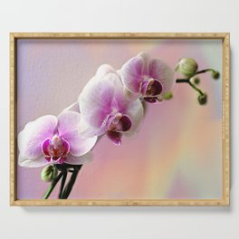 Pastel Rainbow Orchid Serving Tray