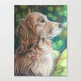 Regal Golden Retriever Canvas Print