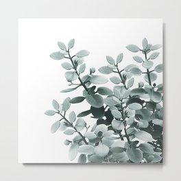 Eucalyptus Leaves Green Vibes #1 #foliage #decor #art #society6 Metal Print