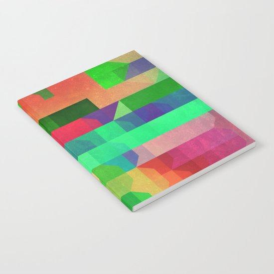 prynsyss Notebook