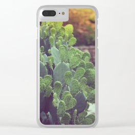 Southwest Sunset Clear iPhone Case