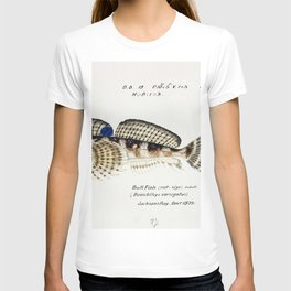Antique Thornfish drawn by Fe Clarke (1849-1899) T-shirt