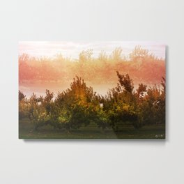 Apple Season Metal Print
