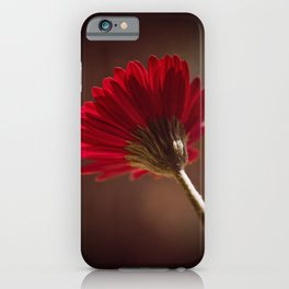 One Gerbera iPhone Case