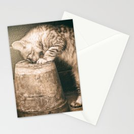 cat curiosity Stationery Cards