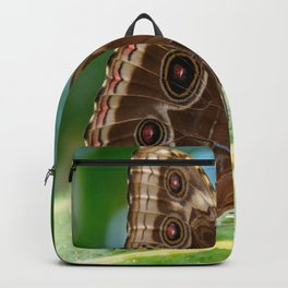 Owl Butterfly Backpack