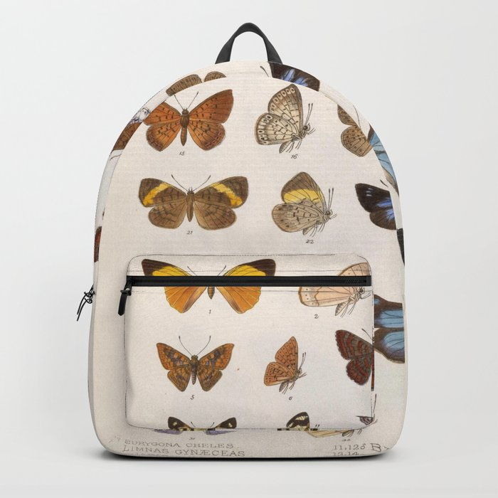 Vintage Scientific Insect Butterfly Moth Biological Hand Drawn Species Art Illustration Rucksack