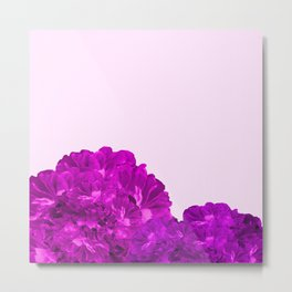 Purple Peonies On A Pink Background #decor #society6 #buyart Metal Print