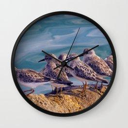 Young Shore Birds Wall Clock