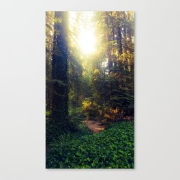 Lead Me Through the Woods Canvas Print