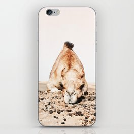 Camille the Camel iPhone Skin