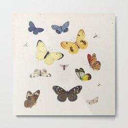 Ensemble de papillons {I/II} Metal Print