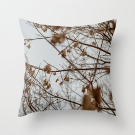 2017-11-22 Throw Pillow