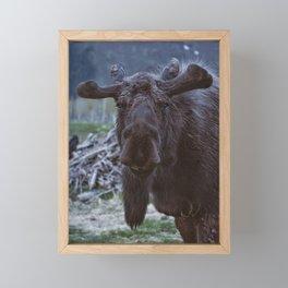 Friendly Moose Framed Mini Art Print