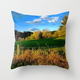 Golden Evening Light Across A Field Throw Pillow