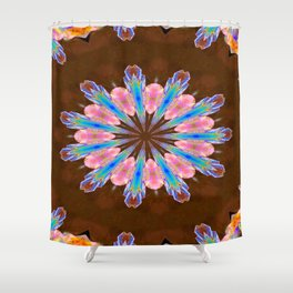 Healing Crystals Mandala Shower Curtain