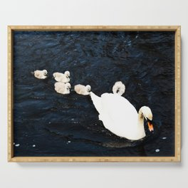 Cygnets on water Serving Tray