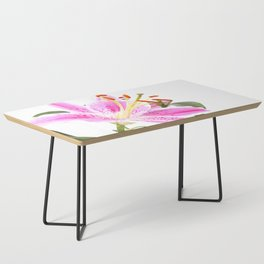 Pink Lily Illustration Coffee Table