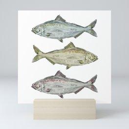 Triple Fish Mini Art Print