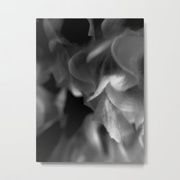 'Ello petal Metal Print