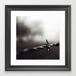 a drop in the fog . . .  Framed Art Print