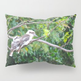 Kookaburras Pillow Sham